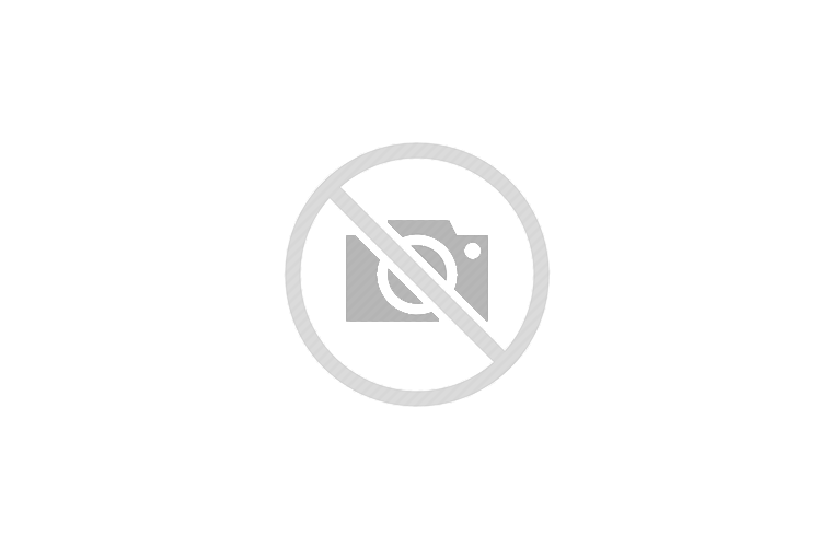 Chef JJ & His Big Green Eggs